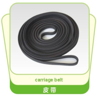 Carriage Belt