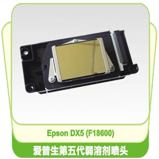Epson R1900 DX5 F186000 Solvent Printhead - Locked (Encryption printhead)