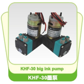 24V Ink Pump for Wide Format Printers