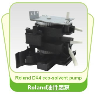 Roland DX4 ECO-Solvent Pump